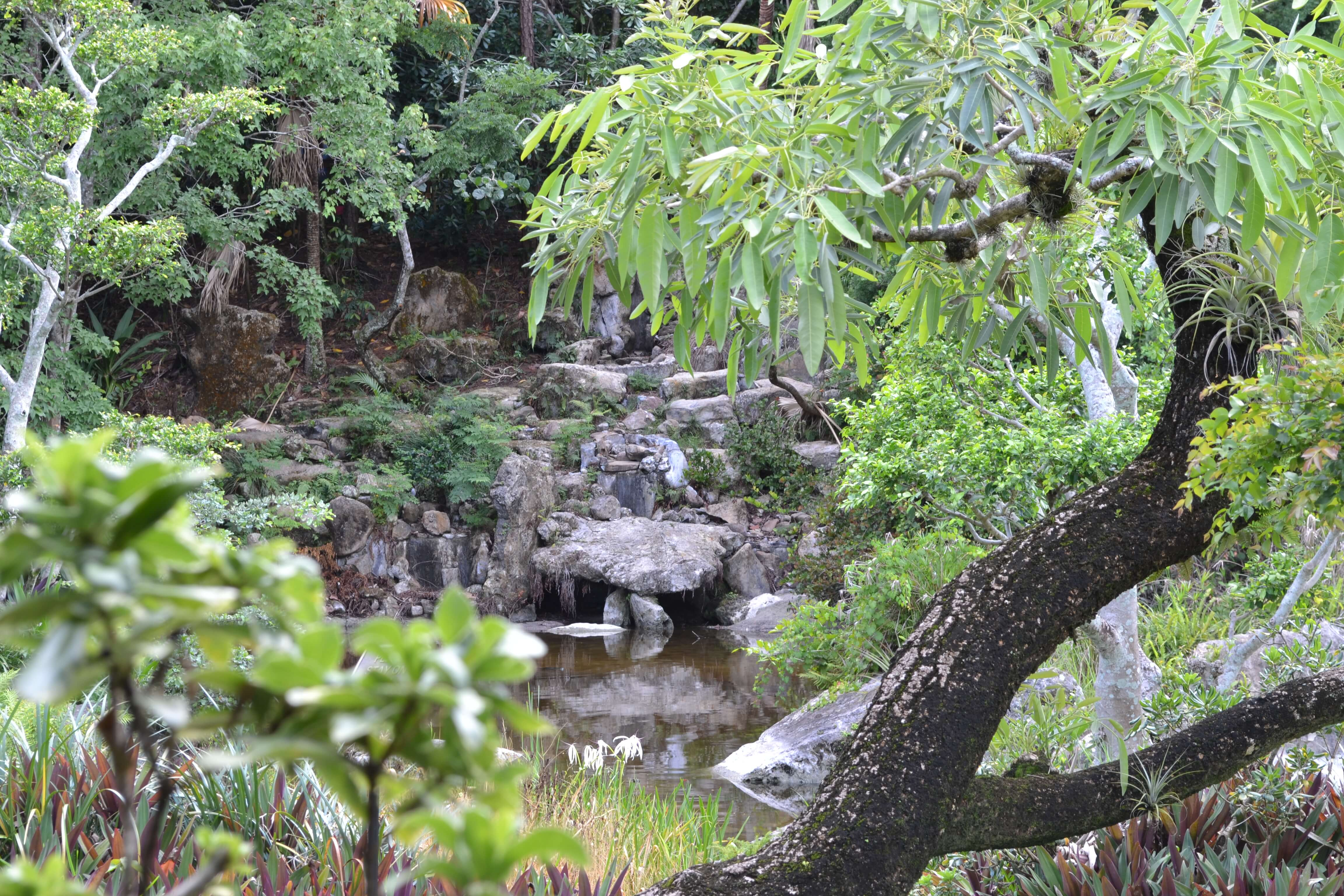 Morikami Museum and Japanese Gardens | A Couple For The Road